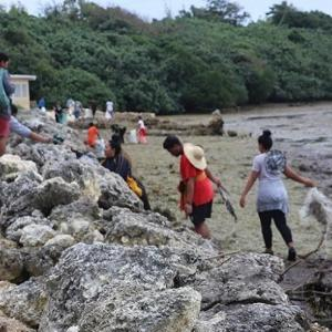 Coastal clean-up and coastal tree planting in Tonga _ Loop Tonga.jpg